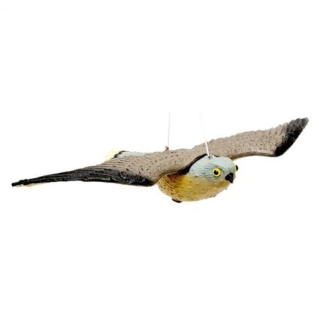 falco dissuasore per volatili