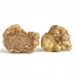 50 g | Fine Fresh White Truffle (Tuber Magnatum Pico) - Italy 1st choice