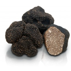 50g | Fresh Winter Black Truffle (Tuber mesentericum) - ITALY 1st choice