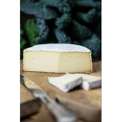 BERT il formaggio vegetale - Forma Vegan a Crosta Fiorita, 200gr Chef Gourmet