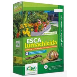 ESCA Lumachicida - Panesca PFnPO, indicata per combattere lumache, limacce, chiocciole 1KG