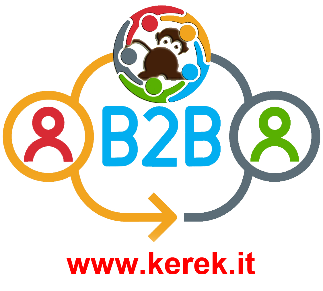KereK Business - B2B semplificata
